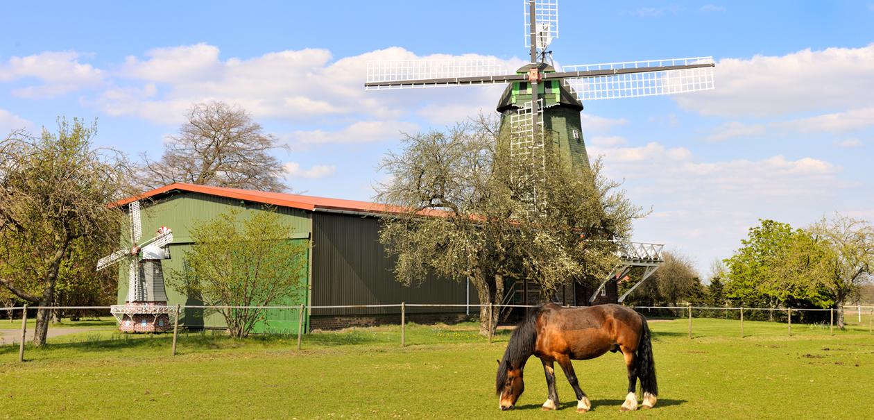 Windmühle Musum